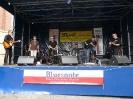 Timo Gross beim 1. Bluesfestival auf dem Thie_6